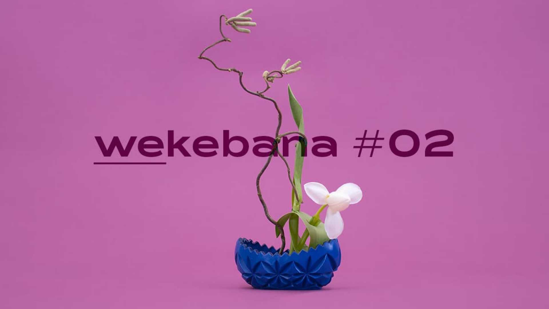 Wekebana_Workshop_02